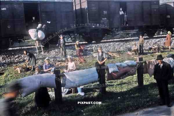 Gypsies freed from a German transport train, collect bed material from American GIs. Bischofshofen  Austria 1945