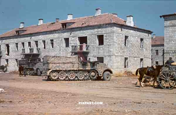 Sdkfz9 FAMO 18 ton halftrack, Krim, Crimea, Kretsch, 1942, 22nd Panzer Division, 204th Panzer Regiment, camo,